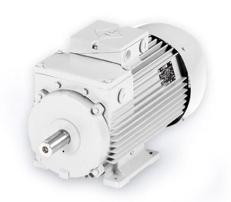 L Wenberg Electric Motors