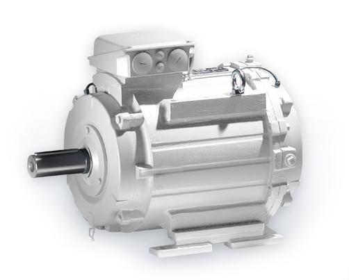 L wenberg electric motors for Liquid cooled ac motor